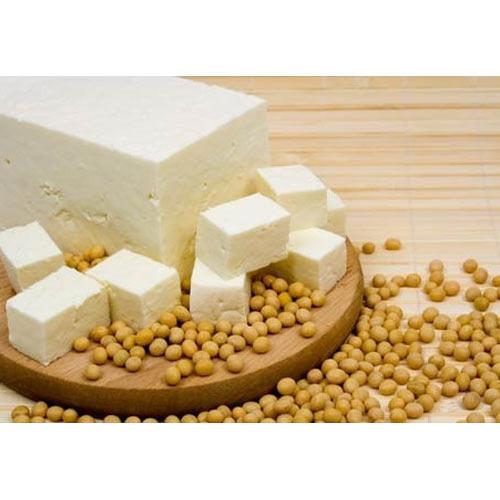 Soya tofu project report Soya paneer